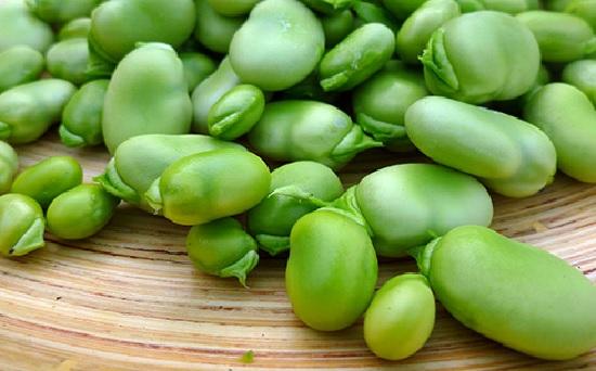 Плод боб Существуют еще плоды созревающие в земле сухие одно четырехсемянные невскрывающиеся бобы например у арахиса а также невскрывающиеся бобы односемянные