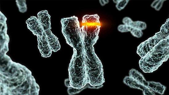 Картинки по запросу гены мутации